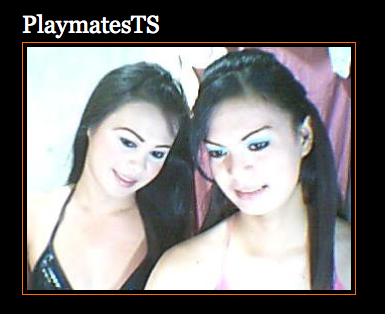 PlaymatesTS [[Cock suckers|live Cock Suckers]] now, [[watch|spy on]], [[Teen Boys|Live Teen Boys|Boy Teen Cams]] and [[Asian Chat Shemales|Live Shemale Cam Chats|Shemale Chat Cam Sites]] and [[Tranny Teens|Live Teen Tranny Cams|Tranny Cam Models]] now.